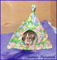 Triangle Pyramid With Rat
